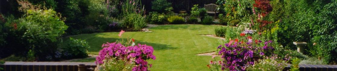Circles of lawn